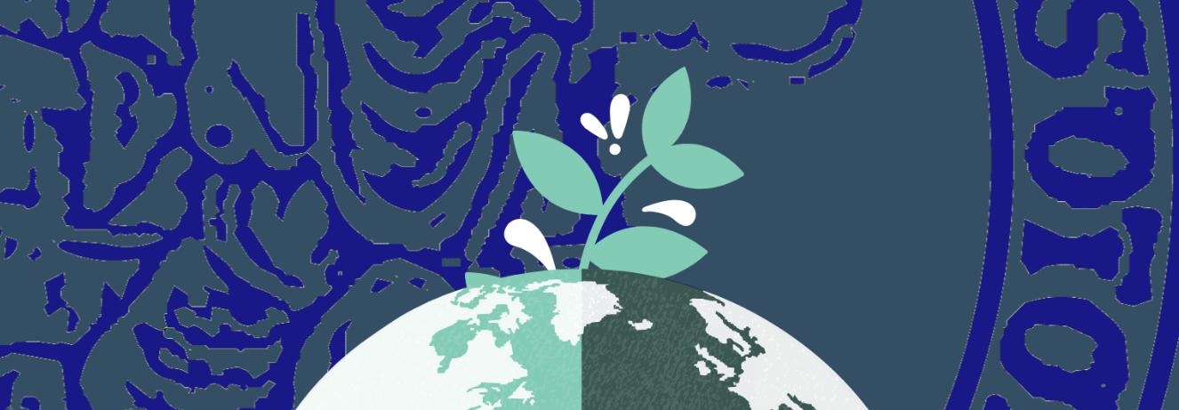 Acqua potabile pubblica, raccolta differenziata dei rifiuti e spazi verdi nel Dipartimento di Scienze Sociali, Isole ecologiche su ogni piano per la raccolta differenziata, due fontane che erogano acqua 'buona [...]