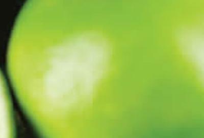 """La Fondazione """"Felice Gianani"""" bandisce un concorso per titoli riservato a cittadini dell'Unione Europea laureati che desiderino perfezionare, in un Paese diverso da quello di provenienza, gli studi intrapresi in [...]"""