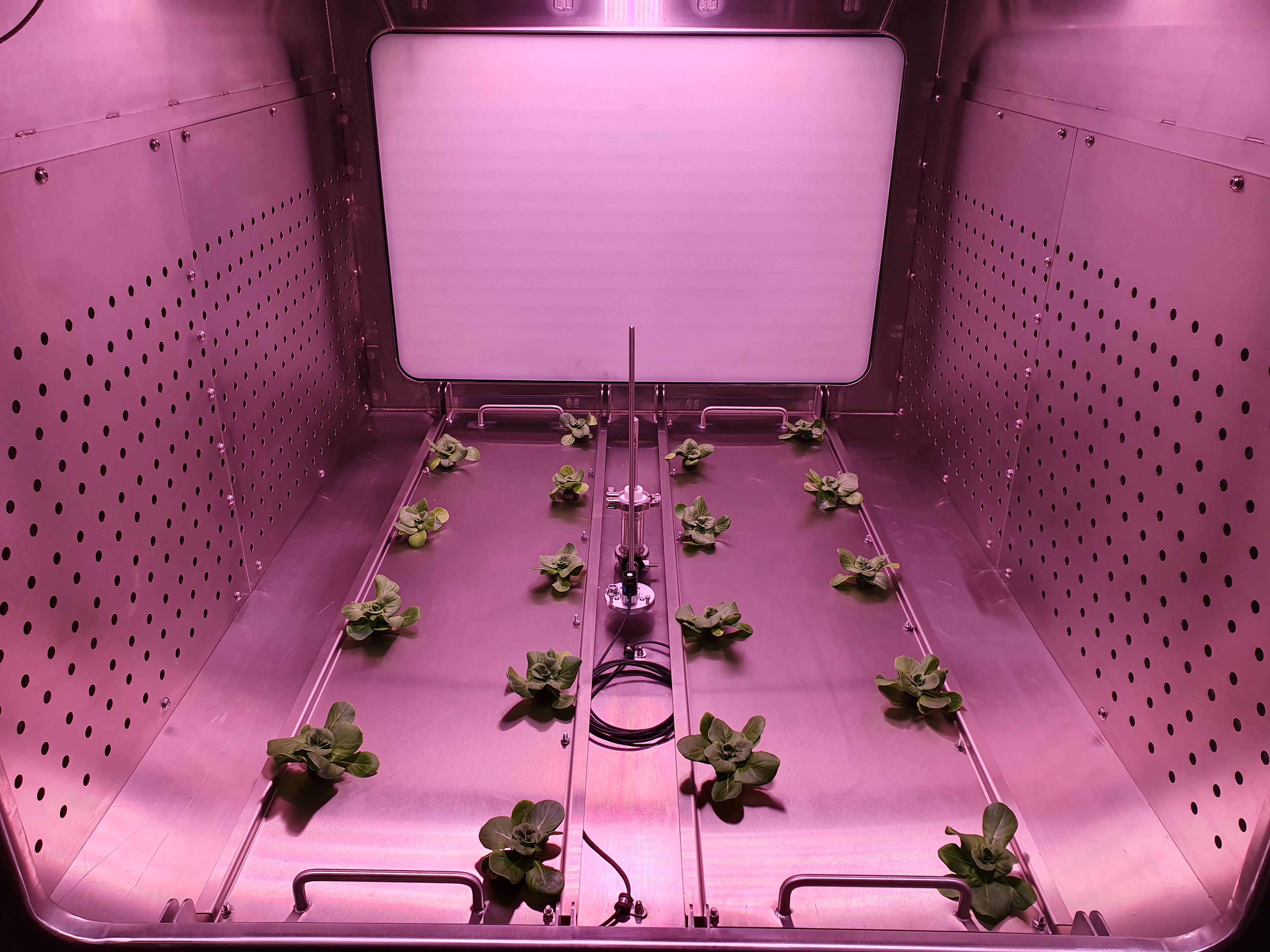 Federico II sempre prima, sempre pioniere. Infatti nasce nel nostro Ateneo il primo laboratorio interamente dedicato alla caratterizzazione delle piante per i sistemi rigenerativi di supporto alla vita. È stato inaugurato [...]