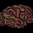Lunedi 27 maggio 2019 alle 10.30 presso l'Aula Cinese del Dipartimento di Agraria a Portici si terrà una giornata dedicata alSystem Dynamics – Pensare per Sistemi con la presentazione dell'edizione [...]